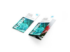 A set of printed flyers or brochures